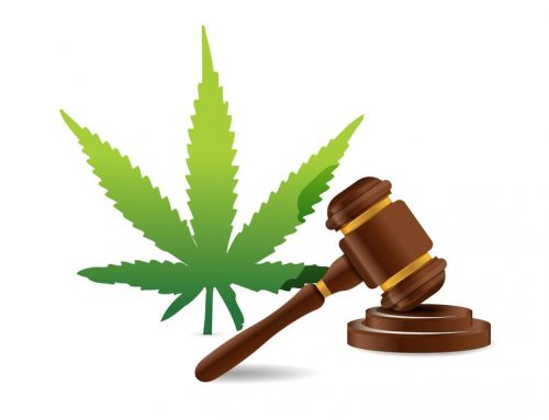 New York's Medical Marijuana Workers' Compensation